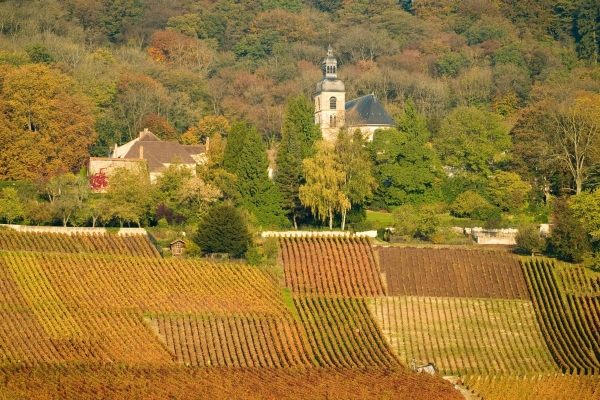 Abbey of Hautvillers – Historic hillsides