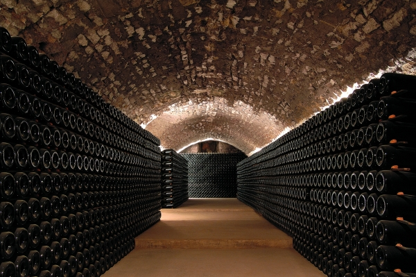 Aubois vineyard cellar, area covered by the undertaking